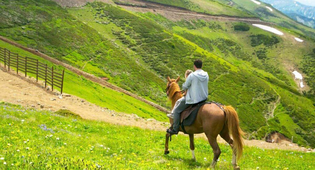 Цены на конные прогулки в Сочи и Адлере