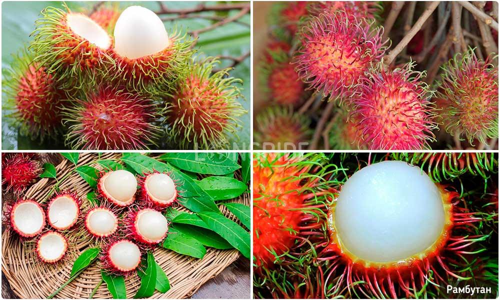 - самый волосатый фрукт Таиланда